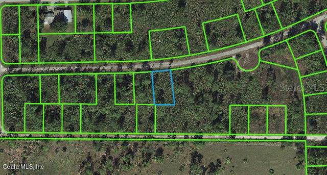 3250 Holifield Avenue, Lake Placid, FL 33852 (MLS #OM541260) :: Zarghami Group