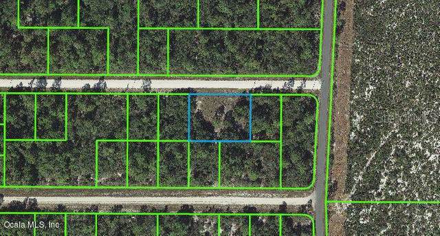 3106 Meridian Avenue, Lake Placid, FL 33852 (MLS #OM541261) :: CGY Realty