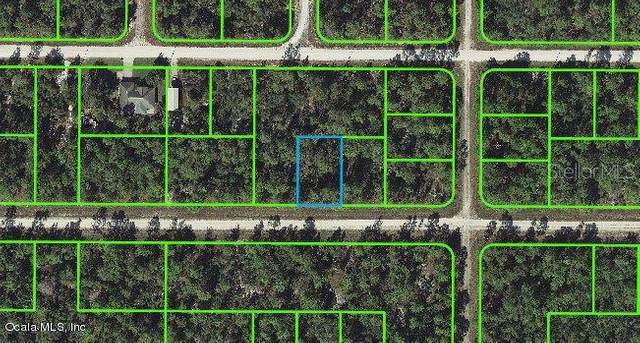 3127 Fairlane Avenue, Lake Placid, FL 33852 (MLS #OM541262) :: CGY Realty