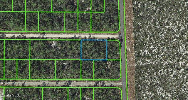 3104 Lewis Avenue, Lake Placid, FL 33852 (MLS #OM541266) :: CGY Realty