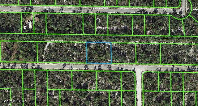 3337 Rhododendron Road, Lake Placid, FL 33852 (MLS #OM541272) :: Better Homes & Gardens Real Estate Thomas Group