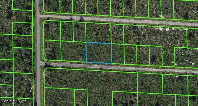 3455 Greentree Drive, Lake Placid, FL 33852 (MLS #OM541274) :: Bridge Realty Group