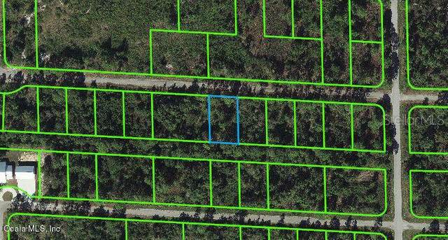 3410 Sandhill Crane Avenue, Lake Placid, FL 33852 (MLS #OM541275) :: Bustamante Real Estate
