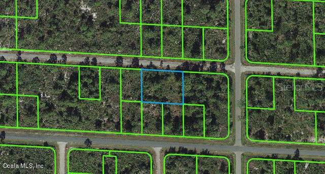 3506 Pheasant Avenue, Lake Placid, FL 33852 (MLS #OM541276) :: Bridge Realty Group
