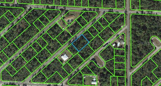 1057 Cellini Street, Lake Placid, FL 33852 (MLS #OM541277) :: Zarghami Group