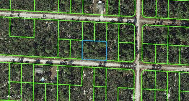 3443 Ostrich Street, Lake Placid, FL 33852 (MLS #OM541279) :: MVP Realty