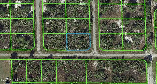 221 NW Broach Street, Lake Placid, FL 33852 (MLS #OM541283) :: Bob Paulson with Vylla Home