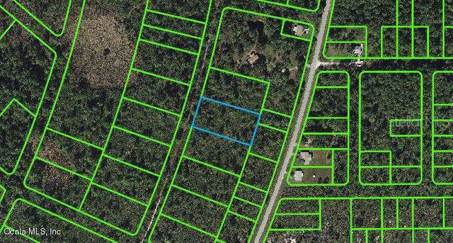 737 Dolphin Avenue, Lake Placid, FL 33852 (MLS #OM541285) :: Team Buky