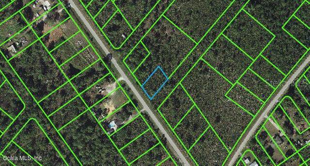 651 Washington Boulevard, Lake Placid, FL 33852 (MLS #OM541286) :: Griffin Group