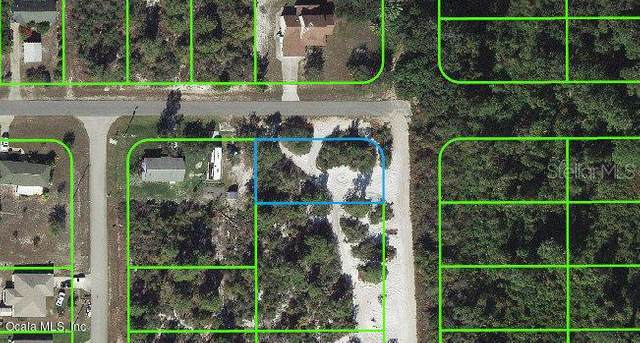 240 Marshall Avenue, Lake Placid, FL 33852 (MLS #OM541287) :: Team Buky