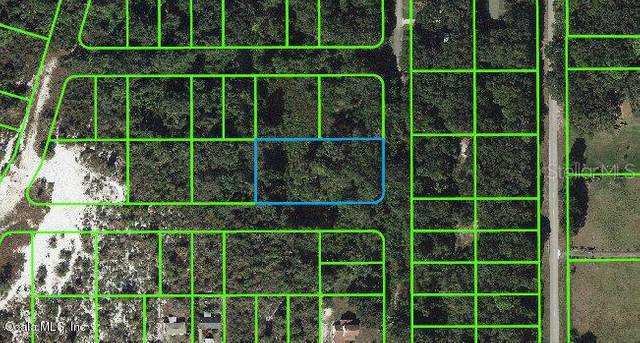 258 Marshall Avenue, Lake Placid, FL 33852 (MLS #OM541288) :: Team Buky