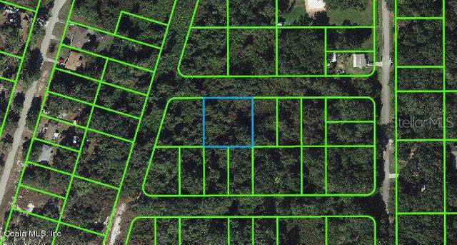 1503 Scrub Oak Street, Lake Placid, FL 33852 (MLS #OM541289) :: Team Buky