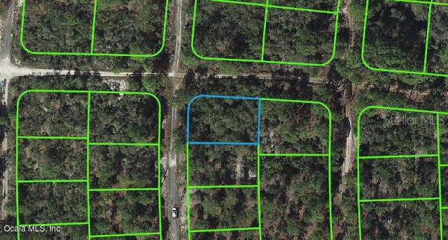 285 Imagination Drive, Lake Placid, FL 33852 (MLS #OM542058) :: The Light Team