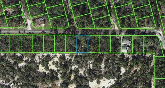 333 Moon Glow Avenue, Lake Placid, FL 33852 (MLS #OM542065) :: Delgado Home Team at Keller Williams