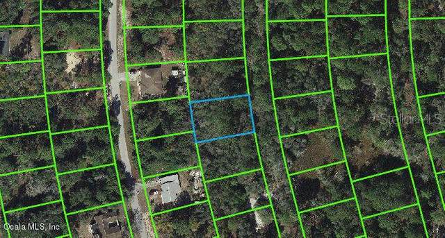 220 Blue Heaven Drive, Lake Placid, FL 33852 (MLS #OM542066) :: Bob Paulson with Vylla Home