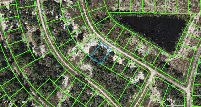 344 Rhythm Drive, Lake Placid, FL 33852 (MLS #OM542075) :: Heckler Realty