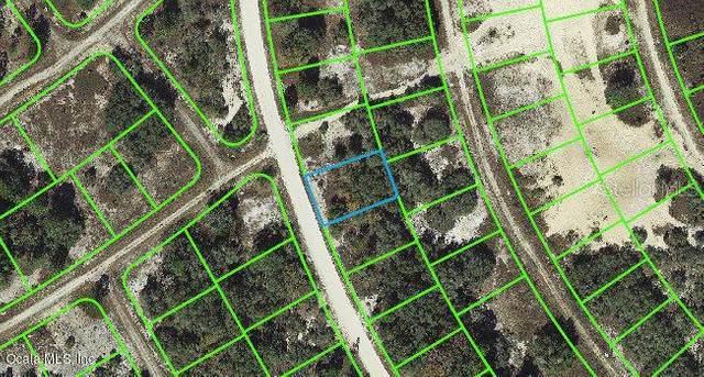 325 Wildwood Drive, Lake Placid, FL 33852 (MLS #OM542077) :: Heckler Realty