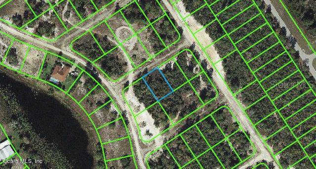 455 Delta Court, Lake Placid, FL 33852 (MLS #OM542105) :: Griffin Group