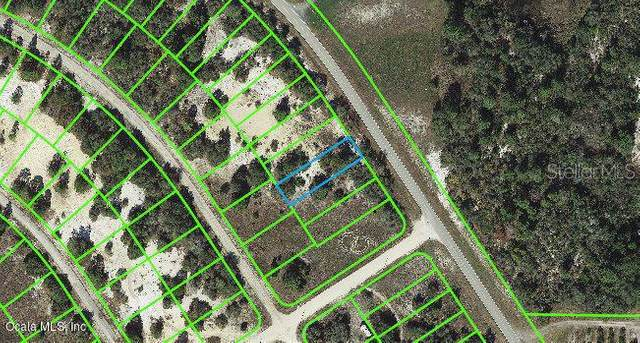 811 Cr 29, Lake Placid, FL 33852 (MLS #OM542121) :: Premium Properties Real Estate Services