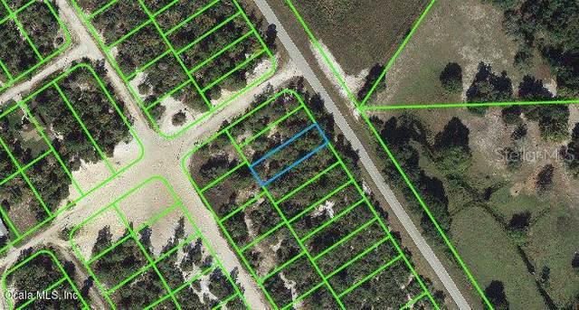 1021 Cr 29, Lake Placid, FL 33852 (MLS #OM542123) :: The Heidi Schrock Team