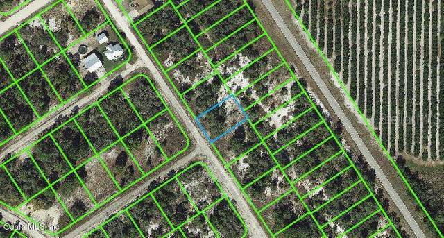 532 Morningside Drive, Lake Placid, FL 33852 (MLS #OM542128) :: Baird Realty Group