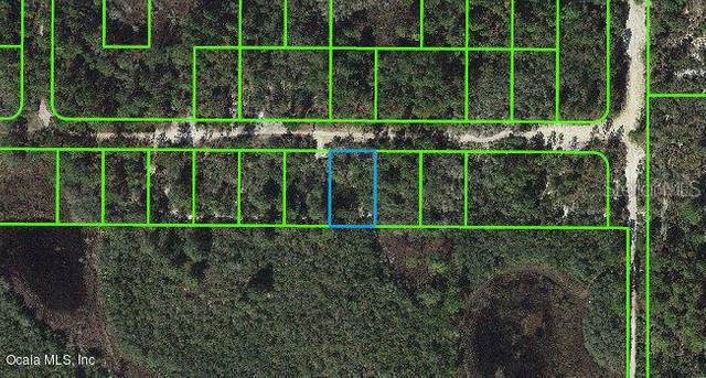 325 Claverton Drive, Lake Placid, FL 33852 (MLS #OM543107) :: MVP Realty