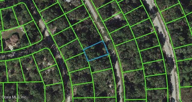 1014 Oriole Street, Lake Placid, FL 33852 (MLS #OM543110) :: Premium Properties Real Estate Services
