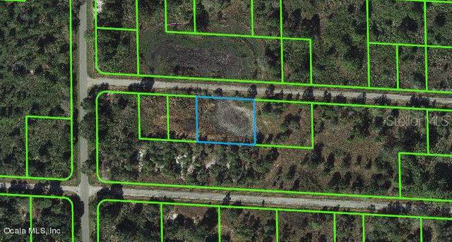3456 Carnation Road, Lake Placid, FL 33852 (MLS #OM543112) :: Zarghami Group