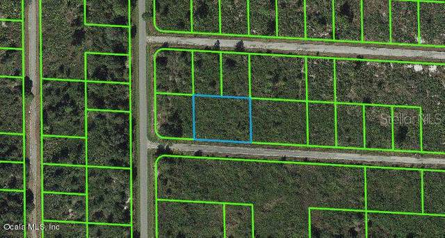 3459 Greentree Drive, Lake Placid, FL 33852 (MLS #OM543113) :: Armel Real Estate