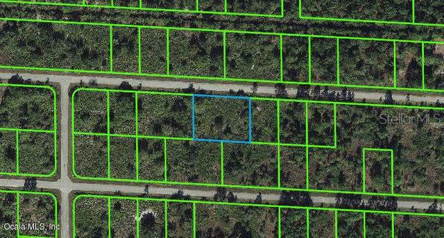 3516 Rhododendron Road, Lake Placid, FL 33852 (MLS #OM543114) :: Southern Associates Realty LLC