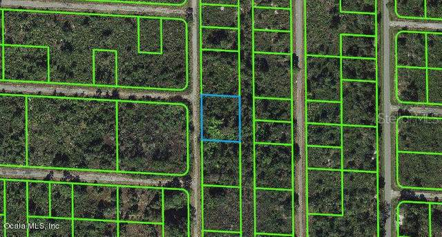 941 Davis Street, Lake Placid, FL 33852 (MLS #OM543115) :: Zarghami Group