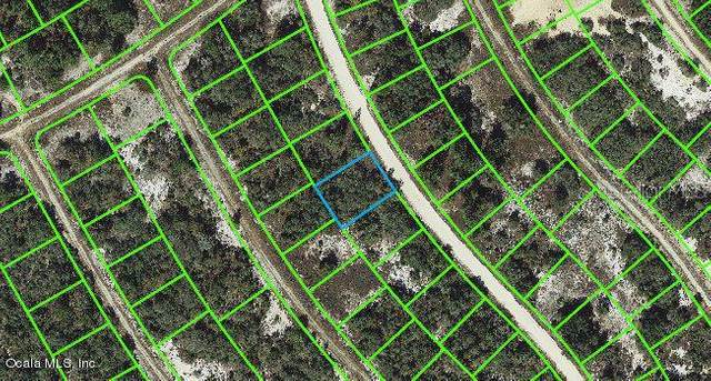 314 Wildwood Drive, Lake Placid, FL 33852 (MLS #OM543117) :: EXIT King Realty