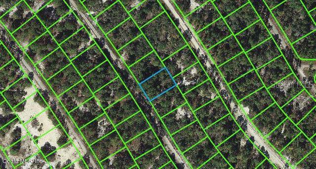 523 Dreamland Drive, Lake Placid, FL 33852 (MLS #OM543119) :: Keller Williams on the Water/Sarasota
