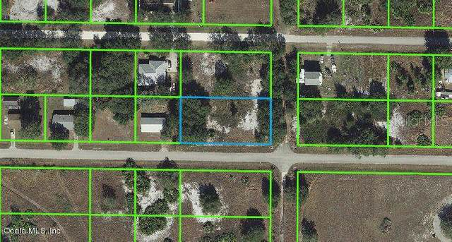 2800 W Newton Road, Avon Park, FL 33825 (MLS #OM543135) :: The Lersch Group