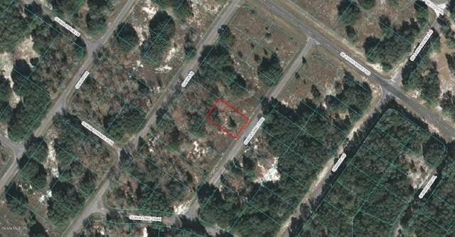 00 Guava Lane Course, Ocklawaha, FL 32179 (MLS #OM546784) :: Team Borham at Keller Williams Realty
