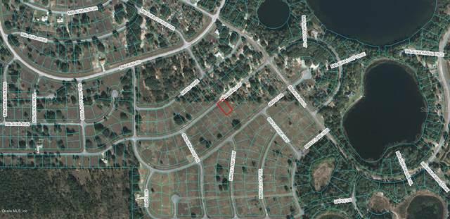 00 Malauka Loop, Ocklawaha, FL 32179 (MLS #OM546785) :: Bustamante Real Estate