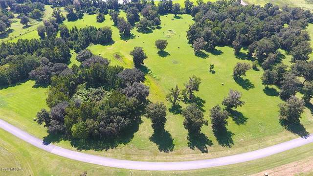 0 SE 22nd Avenue, Ocala, FL 34480 (MLS #OM551787) :: Rabell Realty Group