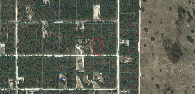 0 SW 76th Lane, Dunnellon, FL 34432 (MLS #OM555991) :: The Light Team