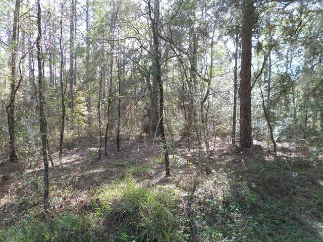 LOT 08 SW 34 Street, Dunnellon, FL 34432 (MLS #OM556435) :: Better Homes & Gardens Real Estate Thomas Group