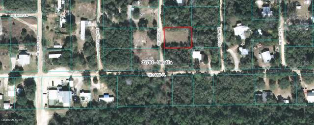 14219 SE 203RD Court, Umatilla, FL 32784 (MLS #OM556747) :: Rabell Realty Group