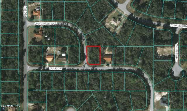 00 Olive Drive, Ocala, FL 34472 (MLS #OM556938) :: Bustamante Real Estate