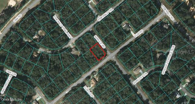 00 Elm Road, Ocala, FL 34472 (MLS #OM556939) :: Bustamante Real Estate
