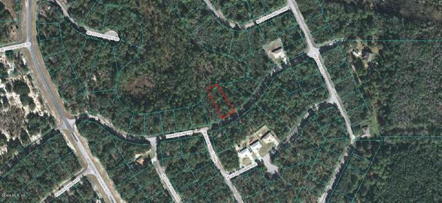 00 Fisher Run Terrace, Ocklawaha, FL 32179 (MLS #OM556973) :: Better Homes & Gardens Real Estate Thomas Group