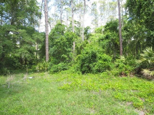 3171 NE 147th Terrace, Silver Springs, FL 34488 (MLS #OM557176) :: Premier Home Experts