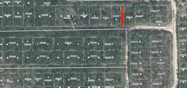 323 Calhoun Avenue, Florahome, FL 32140 (MLS #OM557278) :: The Duncan Duo Team
