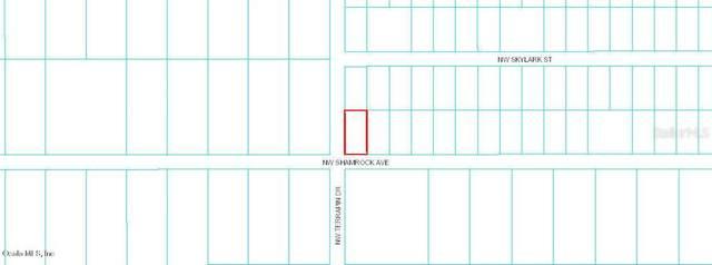 TBD NW Shamrock Avenue, Dunnellon, FL 34431 (MLS #OM558754) :: Premium Properties Real Estate Services