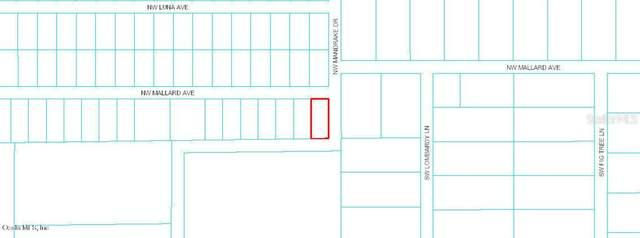 TBD NW Mandrake Drive, Dunnellon, FL 34431 (MLS #OM558829) :: Premium Properties Real Estate Services