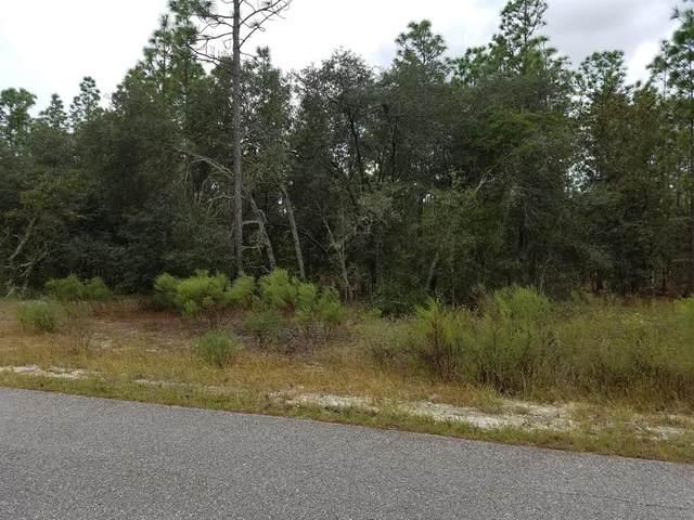 TBD SW Ridgewood Road, Dunnellon, FL 34431 (MLS #OM558833) :: Premium Properties Real Estate Services