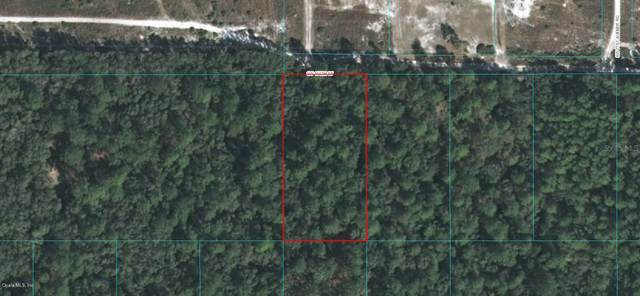 0 SW 150 Street, Dunnellon, FL 34432 (MLS #OM559943) :: The A Team of Charles Rutenberg Realty