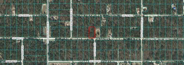 Lot 2 E1/2 SW 80th Avenue, Dunnellon, FL 34431 (MLS #OM561101) :: The Light Team
